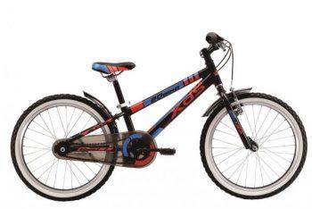 אופני הרים New Dino